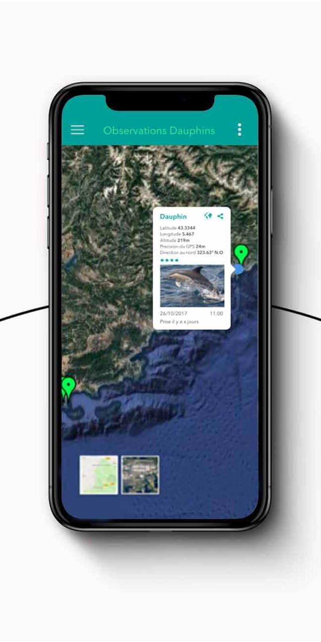 Iphone11-Simplex-1300×1300